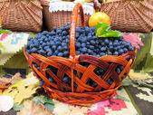 Виноград в корзину. Грейпвайн над ковер и листья — Стоковое фото