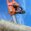 Chain saw in cut of wooden log over blue sky — Stock Photo