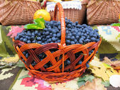 Grapes in the basket. Grapevine over carpet and leaves — Stock Photo