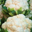 Cauliflower - Stock Photo