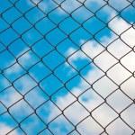Iron Grid fence — Stock Photo #6771801