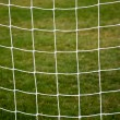 Soccer net — Stock Photo #6771817