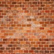 Brick wall — Stock Photo #7157361