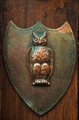 Owl door knob — Stock Photo