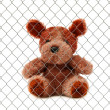 Teddy bear — Stock Photo #7468700