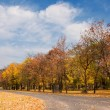 Autumn scenery — Stock Photo #7563205