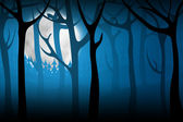 Terrify night forest — Stock Photo