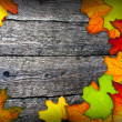 Frame of colorful autumn leaves — Stock Photo
