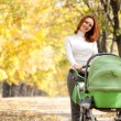 Happy young mother with baby in buggy - Stock Photo