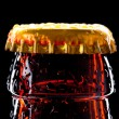 Top of wet beer bottle — Stock Photo #7586618