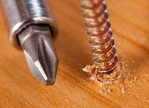 Screwdriver and screw — Stock Photo