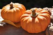 Pumpkins on black background — Stock Photo