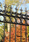 Wrought iron gate — Stock Photo