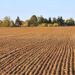 Furrows in field heading toward a small village — Stock Photo