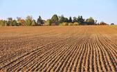 Furrows in field heading toward a small village — Stock Photo