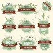 Set of Natural Premium Quality Labels — Stock Vector
