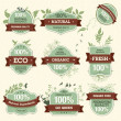 Royalty-Free Stock Imagen vectorial: Set of Natural Premium Quality Labels