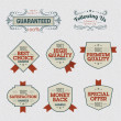 Set of Premium Quality Labels — Stock Vector