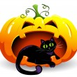 Pumpkin and cat. — Stock Vector