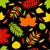 Autumn leaves on the black. — Stock Vector