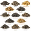 Black tea collection — Stock Photo