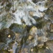 Rushing stream — Stock Photo