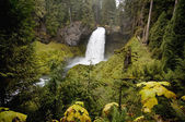 Sahalie Falls, Oregon — Stockfoto