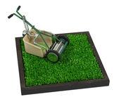 Rasaerba retrò sull'erba — Foto Stock