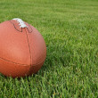 Stock Photo: American Football on Grass Field