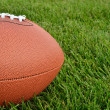 Close up of an American Football on Grass Field — Stock Photo