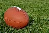 American Football on Grass Field — Stock Photo