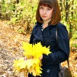 Girl in an autumn forest — Stock Photo