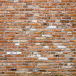 Brick wall texture — Stock Photo #7350662