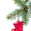 Red christmas star hanging from tree — Stock Photo #7656413