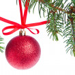 Red christmas ball hanging from tree — Stock Photo #7656452