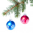 Ball hanging from spruce christmas tree - Stockfoto