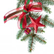 Decorated christmas branch - Foto de Stock