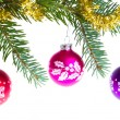 Stock Photo: Christmas balls on spruce branch