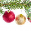 Red christmas ball hanging from tree — Stock Photo
