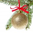 Christmas balls hanging from tree — Stock Photo