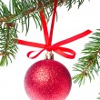 Red christmas ball hanging from tree — Stock Photo #7656723