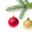 Red christmas ball hanging from tree — Stock Photo #7656740