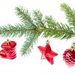 Red christmas decoration on the tree - Foto de Stock