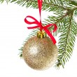 Christmas balls hanging from tree — Stock Photo #7656765