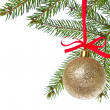Christmas balls hanging from tree — Stock Photo #7656773