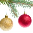 Red christmas ball hanging from tree - Foto de Stock