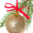 Christmas balls hanging from tree — Stock Photo #7656879