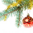Decorated christmas branch — Stock Photo #7656905