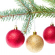 Red christmas ball hanging from tree — Stock Photo #7656906