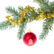 Red christmas ball on branch — Stock Photo #7656910